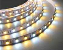 LEDware SMD LEDstrip | 24 Volt | 14,4 Watt | 60 RGB + Warm Wit LEDs in één LED | 1 Meter