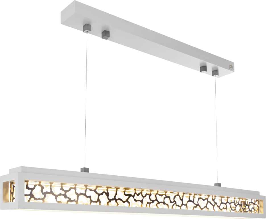 Plafond verlichting LEDware uw specialist in LEDverlichting Moet Art ...